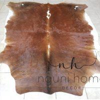 81008-xl-aa-grade-stunning-brownwhite-nguni-1568356017-jpg