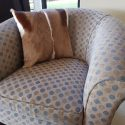 sc01-special-pair-of-springbuck-cushions-1561730053-jpg