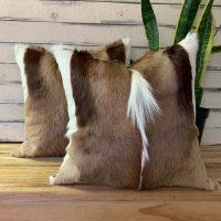 sc01-special-pair-of-springbuck-cushions-1594208847-jpg