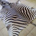 z02-aa-grade-zebra-hide-lovely-large-size-1527770616-jpg